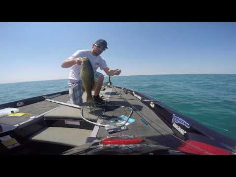 Neko Rig How To & Spybait Fishing Lake St. Clair Summer Smallmouth 8/1/17