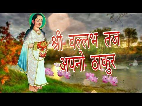 Shri vallabh taj apno thakur by pushtivilas