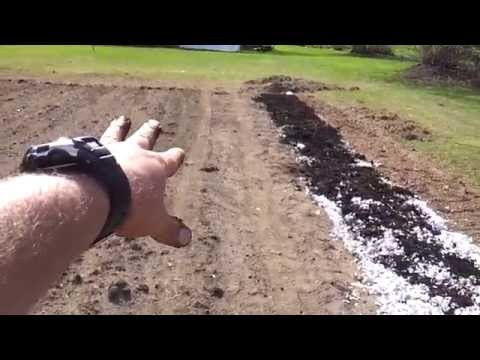 Adding compost and shredded paper to the garden
