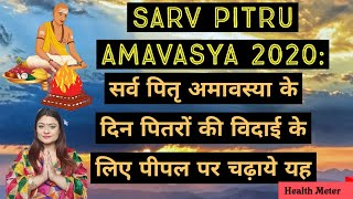 Sarv Pitru Amavasya 2020: सर्व पितृ अमावस्या के दिन पितरों की विदाई के लिए जरूर चढ़ाये पीपल पर यह