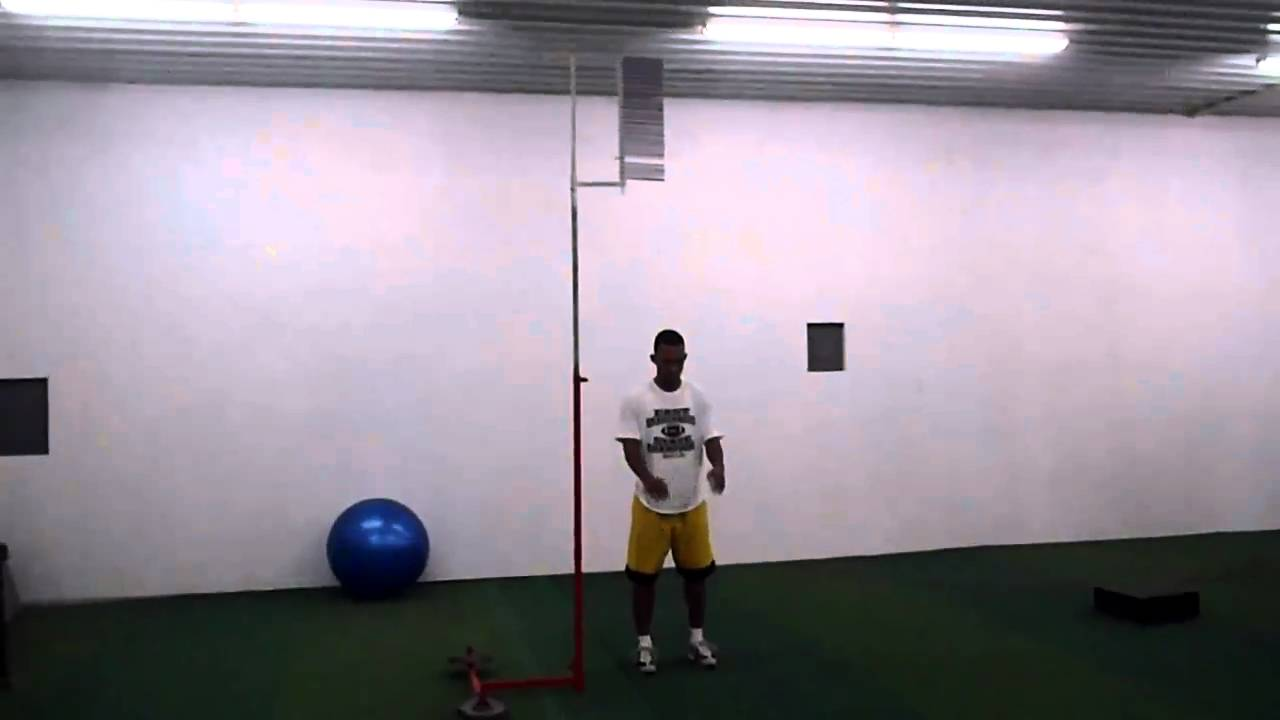 No Step Vertical Jump