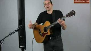 Acoustic Guitar Reviews the Fishman SoloAmp