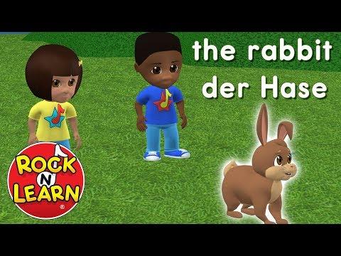 Learn German Through English | Learn German For Beginners | German Grammar