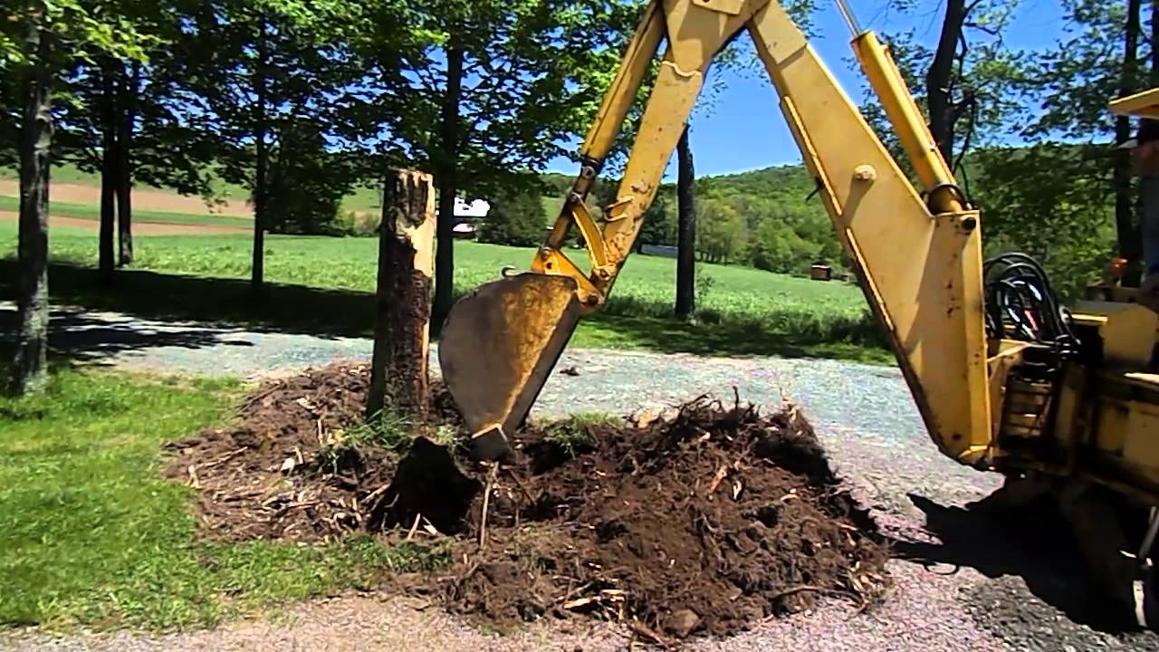 Massey Ferguson Backhoe Digging Maple Tree Stump