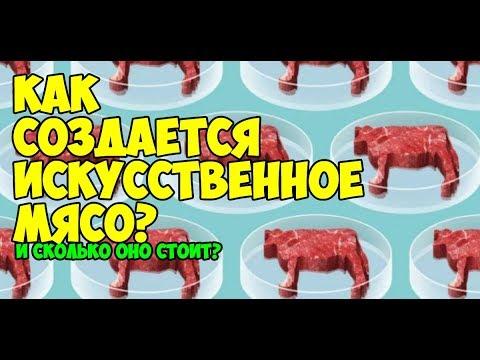 Как создается искусственное мясо?