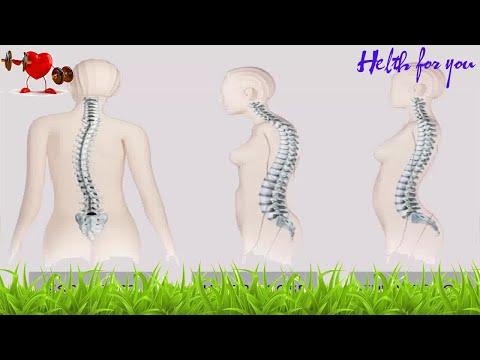 Displasia Coxofemoral - Você sabe o que é?из YouTube · Длительность: 5 мин39 с