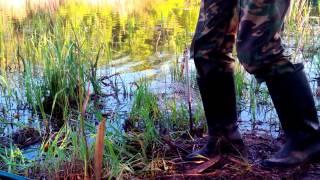 Рыбалка. Снасти и способы ловли рыбы, фото и видео ...
