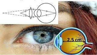 आंखों के लेंस – Human Eye Lens, its Focal Length, Corerction of Myopia and Hypermetropia – in Hindi