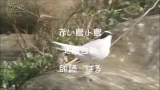ゆっくり生きる 朗読 はるhttp://haru123fu.exblog.jp/