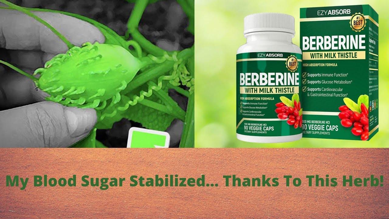 Diabetes offer berberine supplement - Insulin Herb - 2021 - YouTube