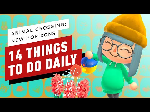 Animal Crossing: New Horizons - 14 Things To Do Daily