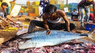 Live Professional Fish Cutting in Fish Market 2019 || Fisherman