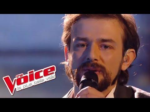 William Sheller - Un homme heureux   Clément Verzi   The Voice France 2016   Finale