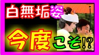 片岡愛之助(44) & 藤原紀香(45) 【結婚式は京都どこ!?】 ~下鴨神社...