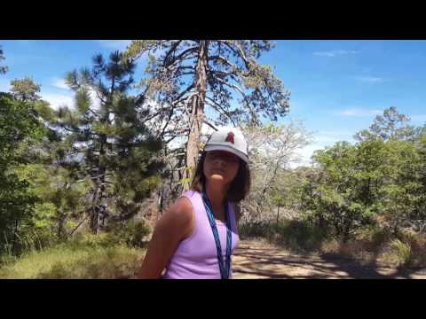 OFF-ROADING IN BIG BEAR -  PART 2