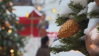 Елка на Новый год. История елочной традиции на зимние праздники