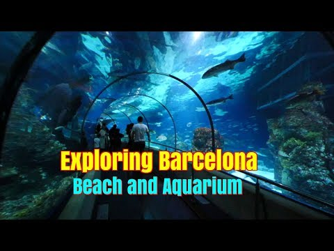 Exploring things to do in Barcelona Spain.  Beach and Aquarium.  Ep99.
