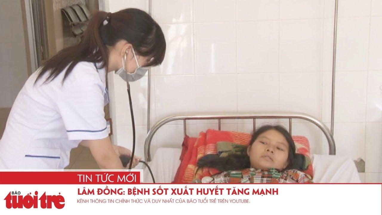 Lâm Đồng: Bệnh sốt xuất huyết tăng mạnh