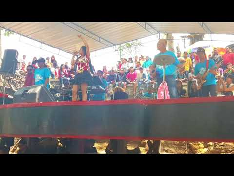Kalimba live omac cokro