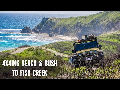 4x4ing Beach & Bush Adventure
