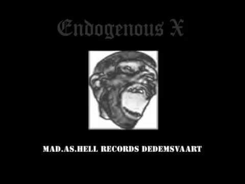 Endogenous X - Terror Mix