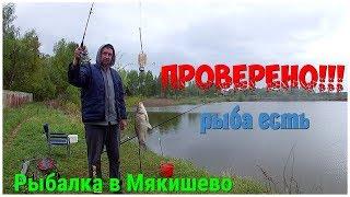 Рыбалка в д.Мякишево. ПРОВЕРЕНО!!!Рыба есть ,забыли безмен.