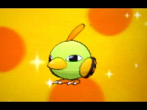 Live Shiny Natu Hatched After Just 11 Eggs On Pokemon