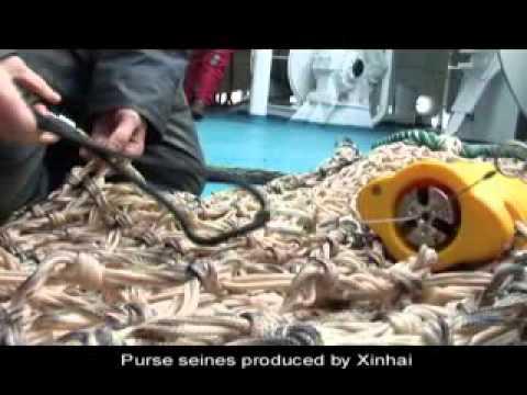 Hunan XinHai Net Industry Co.,Ltd Propaganda Film