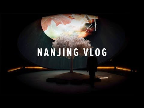 Nanjing China Travel Vlog 001