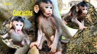Cute acting of baby Farrah / Adorable gestures of Farrah baby / Farrah baby playing funny & lovely