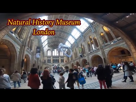 Natural History Museum London ,World Most Impressive Natural History Museum London