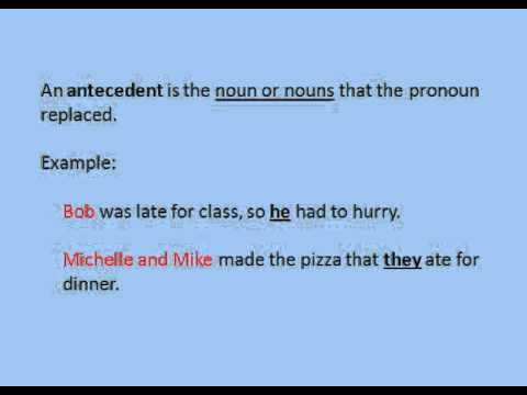 5th Grade - Pronouns and Antecedents - YouTube