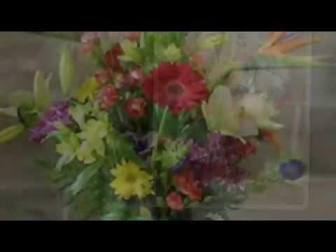 Mayfield Floral - Cleveland Florist