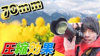 【標準ズーム】70mmで充分!圧縮効果の魅力をお伝えします。