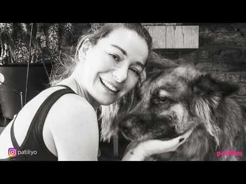 Ölmek Üzereyken Kurtarılan Kurt (Kutmik) Köpeğin Muhteşem Değişimi
