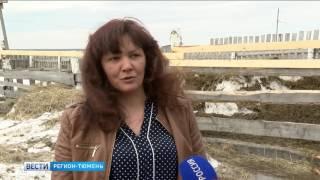 Десятки фермеров получили гранты на развитие в Тюменской области
