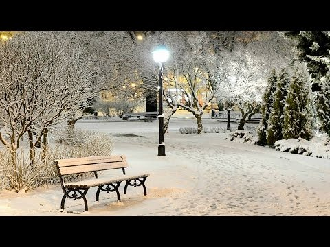 Snow in Vancouver. Original music by Luda Gogolinski. 2016