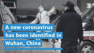 A new coronavirus has been identified in Wuhan, China