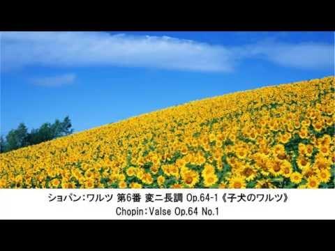 心が踊るリズミカルなクラシック名曲集・Rhythmic Classical Music Collection(長時間作業用BGM)