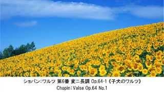 心が踊るリズミカルなクラシック名曲集・Rhythmic Classical Music Collection(長時間作業用BGM) thumbnail