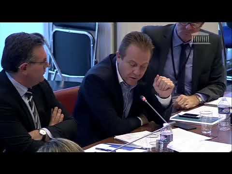 Olivier Gaillard Commission des finances Audition de Raoul Briet (22 novembre 2017)