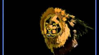 Speed Paint в фотошопе - Рисуем льва