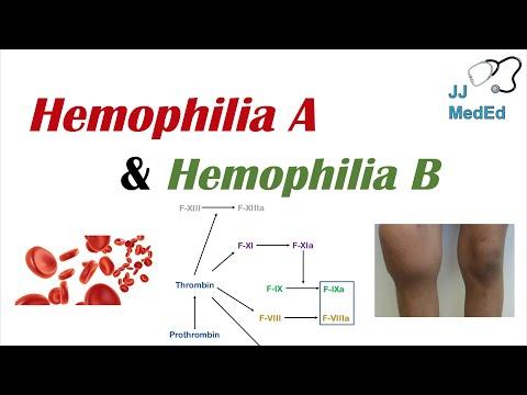 Hemophilia A vs Hemophilia B | Genetics, Symptoms and Treatment