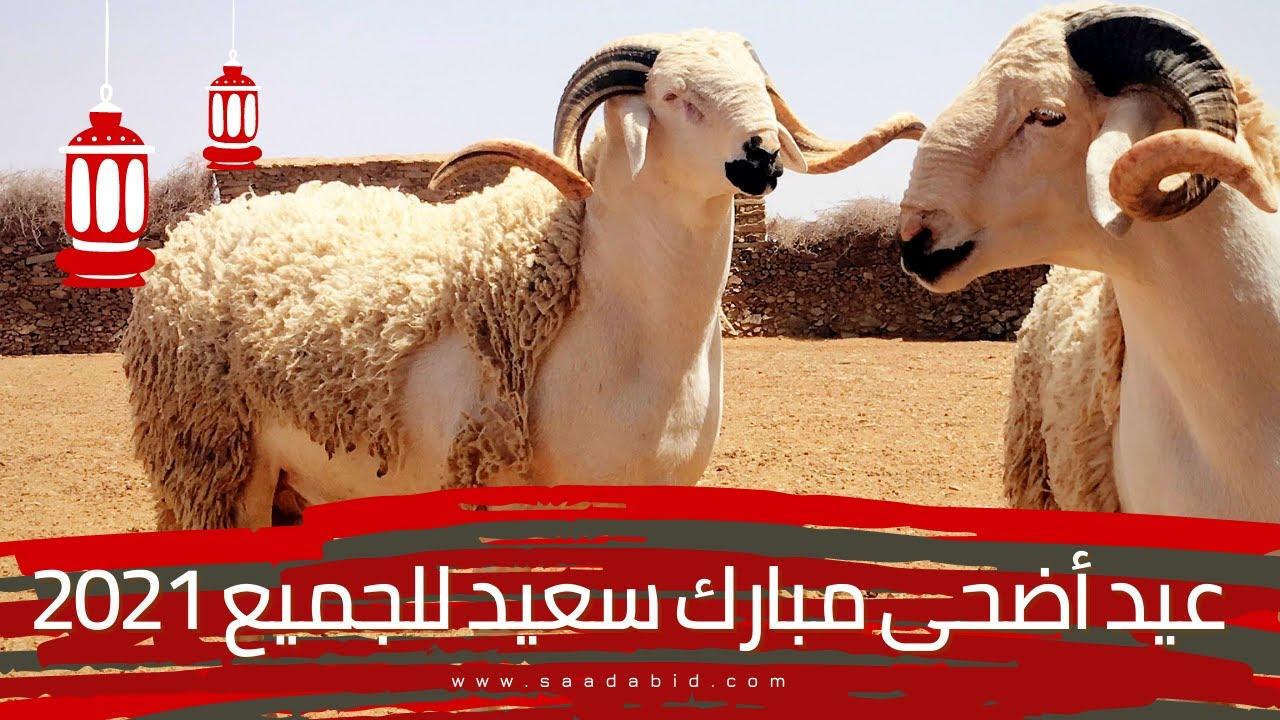 عيد أضحى مبارك سعيد للجميع 2021