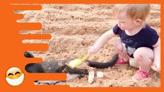 Download Baby and Cat are Best Friends - Funny Pets Videos Mp3 and Videos