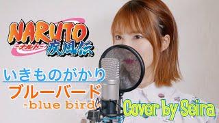 Gambar cover ブルーバード / いきものがかり 【NARUTO疾風伝 OP】(Blue Bird / Ikimonogakari ) cover by Seira