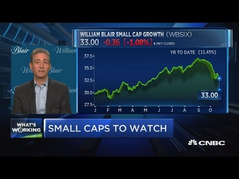These are the small-caps to watch: William Blair's Balkin