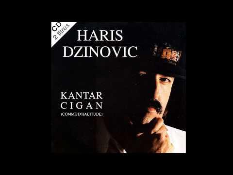 Haris Dzinovic -