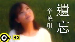 辛曉琪 Winnie Hsin【遺忘 Forget】Official Music Video thumbnail