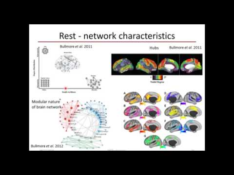 Mining Neuroimaging Data to Explore Brain Dynamics by Dr. Gowtham Atluri (Univ. of Minnesota)
